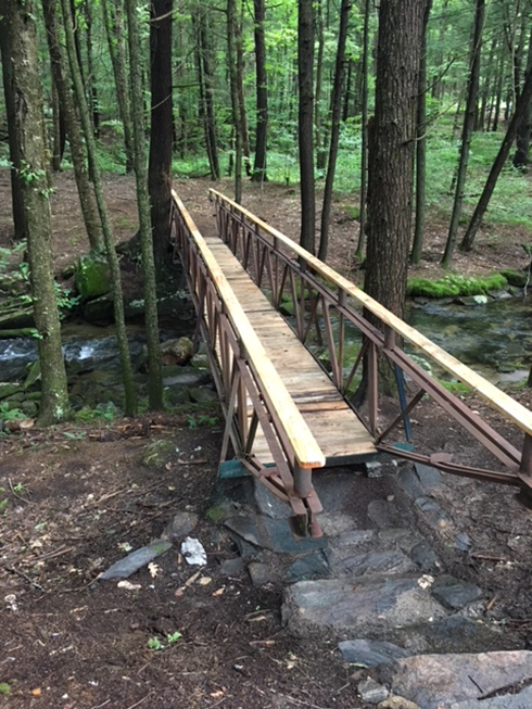New bridge on the Radford-Smith Trail