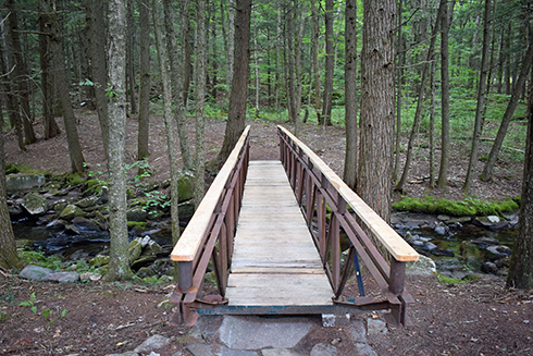 The new bridge across Grassy Brook, that was created by Phil Pellerin, awaits hikers.